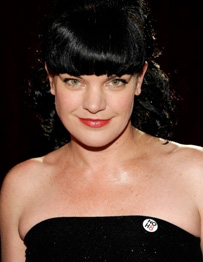 Pauley Perrette's Ex-husband Violates Restraining Order